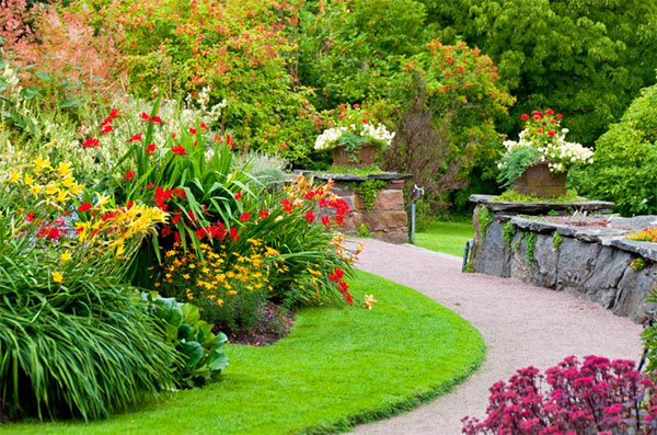 Make Your Neighbours Jealous With A Beautiful Lawn Every