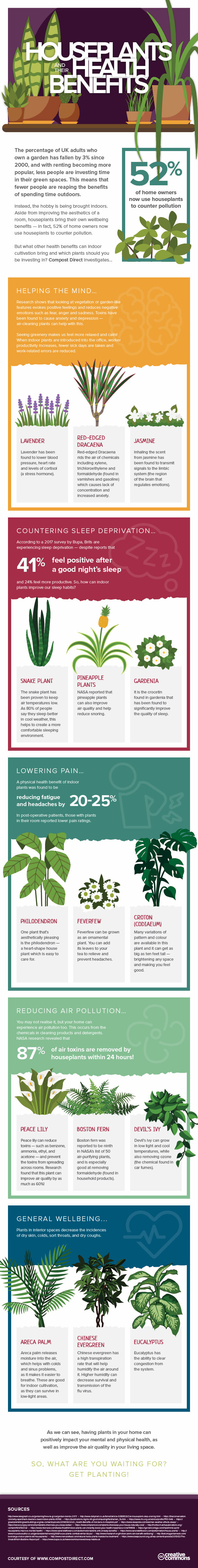 house plants and their health benefits